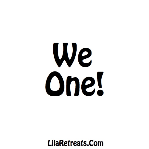 We One! Meme